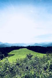 akina_02.jpg